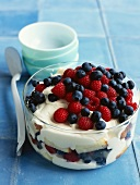 Raspberry and bilberry trifle