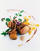 Roast saddle of rabbit and chops, oregano, bran and popcorn