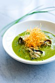 Cream of sorrel soup with oysters and watercress
