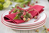 Napkin ring made with small raspberry branches