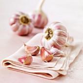 Head of pink garlic