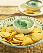Nettle dip with spicy crisps