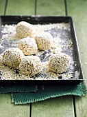Chicken and oat meatballs