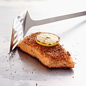 Piece of salmon with parmesan crust