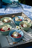 Bowls of beetroot mousse,fresh goat's cheese quenelle and alfafa