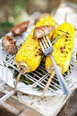 Grilled corn on the cobs and sausages