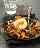Pan-fried chanterelles with a soft-boiled egg