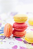 Mixed citrus fruit macaroons