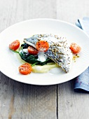 Fish on a bed of spinach and basil espuma