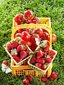 Basket of tomatoes and two punnets of strawberries