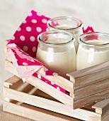 Glass pots of plain yoghurt