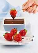 Dipping strawberries into melted chocolate