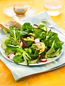 Corn lettuce, sea thong, avocado, radish and cucumber salad