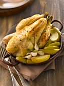 Chicken cooked with cider ,apples and potatoes