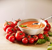 Tomato soup with cream and basil