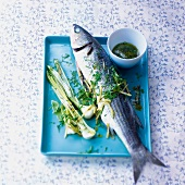 Mullet with spring onions and herb vinaigrette