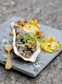 Horse mackerel and oyster tartare