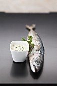 Grilled mackerel with cream sauce