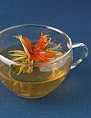 Cup of Chrysanthemum tea