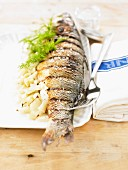 Grilled sea bass with fennel