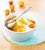 Fromage blanc with mirabelle plum and honey jam