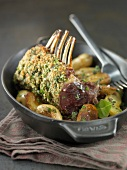 Loin of lamb in herb crust with Grenaille potatoes