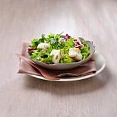 Salat mit Seeteufel und Pinienkernen