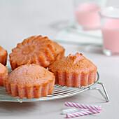 Pink biscuit Financiers