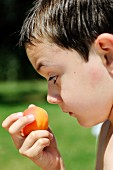 Young boy eating an apricot