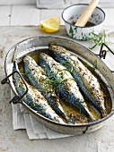Mackerels marinated in tarragon