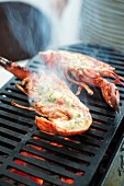Cooking on the barbecue a lobster with fresh herb butter