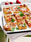 Tomato and cheese rectangular pizza