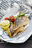 Sea bream fillets