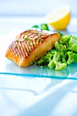 Grilled salmon with broccolis