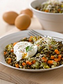 Lentil salad with capers and a poached egg
