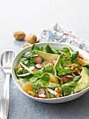 Feldsalat mit Radieschen, Avocado, Walnüssen und Fenchel