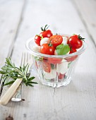 Cherry tomato and small mozzarella ball salad