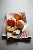 Äpfel, ganz und Schnitze