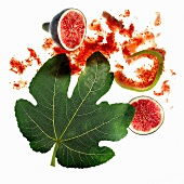 Fig leaf and figs