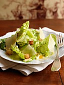 Lettuce,parmesan flake and crouton salad