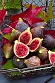 Basket of fresh figs