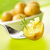 Boiled potato with salt and butter