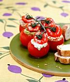 Verschiedene gefüllte Tomaten
