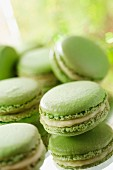 Absinthe from Haut-Doubs-flavored macaroons
