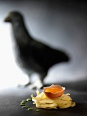 Eigelb in Eierschale auf Nudeln, dahinter Schatten einer Henne