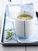 Cream of zucchini,fennel and Pastis soup