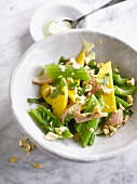 Turkey, celery stalk and mango salad
