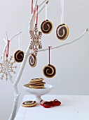 Rolled shrortbread cookies as Christmas decorations