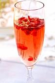 Cocktail mit Champagner und Granatapfelkernen