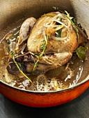 Free-range pigeon casserole